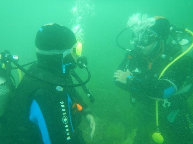 stage Formation Niveau 1 - Plonger en Baie de Morlaix à Carantec